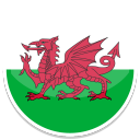 Wales-icon (1)